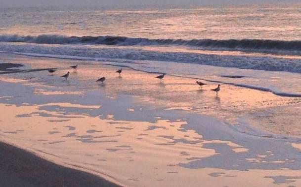 Бархатный сезон в Кирилловке: стоит ли ехать на Азовское море в сентябре?
